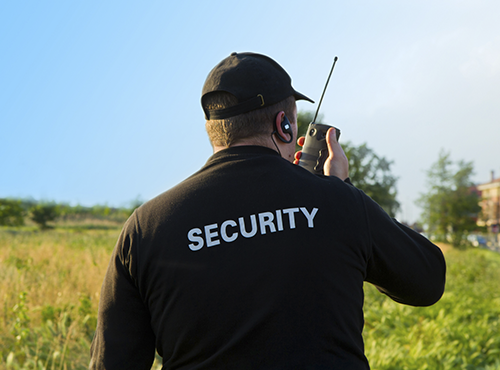 Inspección de Seguridad